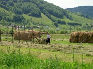 foto - visitmaramures.ro